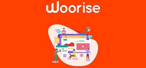افزونه-Woorise